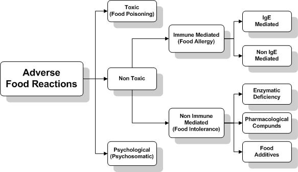 Adverse Food Reaction Flow Chart