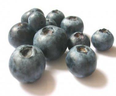 blueberries_1_1