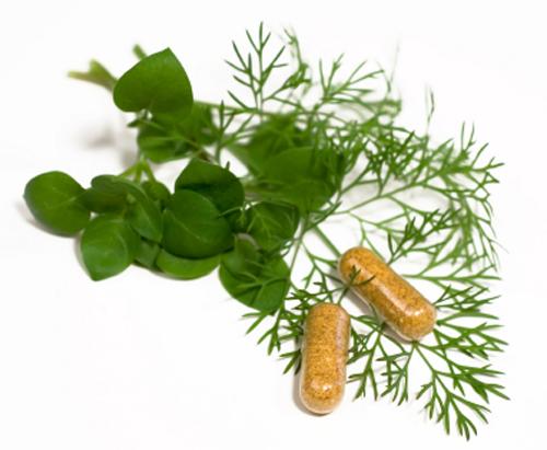 herbal medicines1
