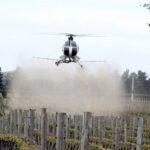 pesticides on grapes